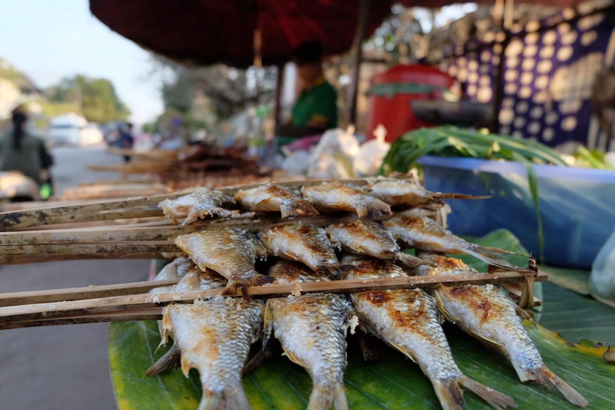 pesce arrosto al mercato di Luang Prabang in Laos