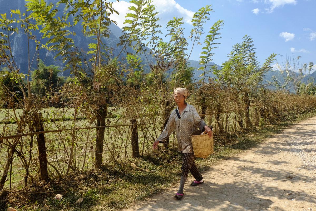 Donna contadina in Laos