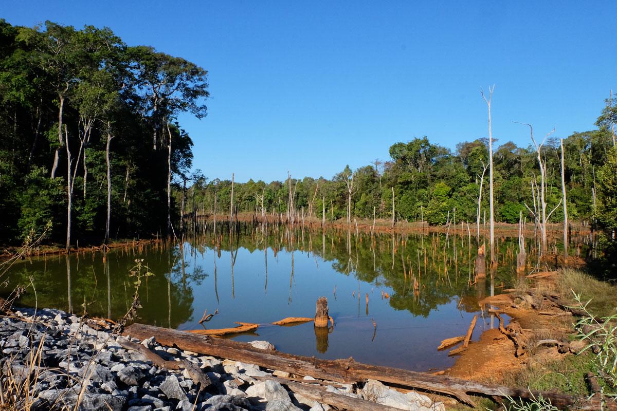 Laos Zaino in spalla lago con tronchi secchi al suo interno