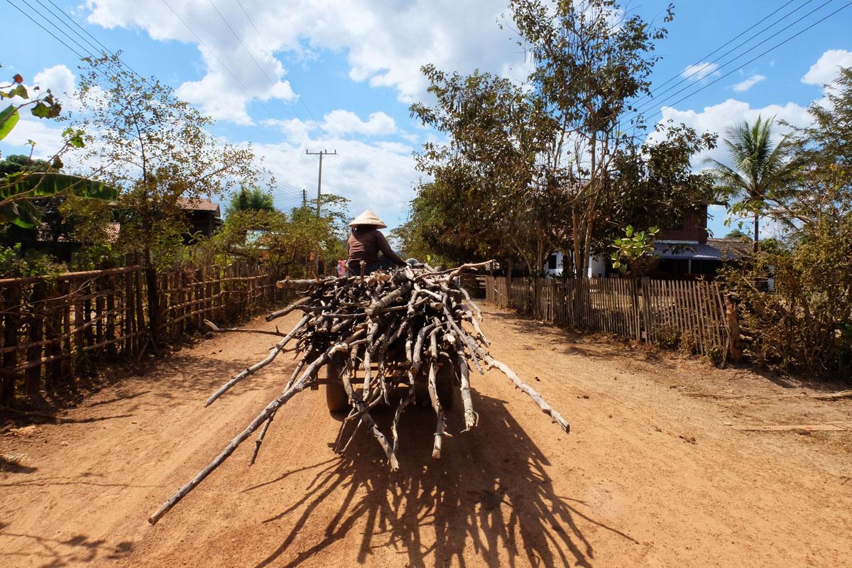 Uomo trasporta legna con un carretto in Laos