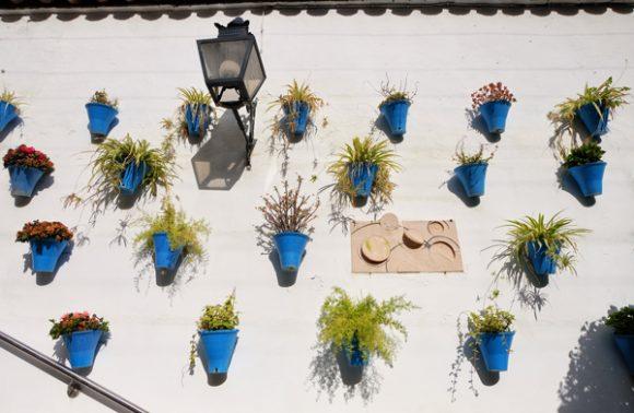 Muri pieni di vasi fioriti a Cordoba: sono ovunque