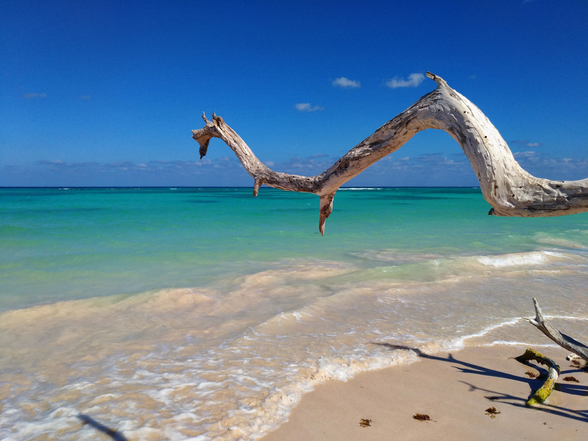 Spiaggia a Cayo Jutias