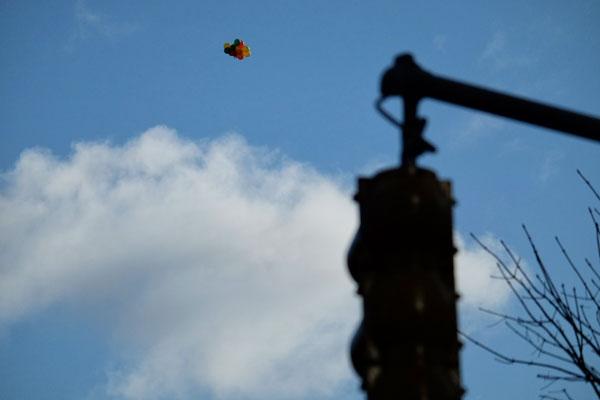 Palloncini nel cielo di New York