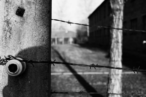 Filo spinato nel campo di  concentramento di Auschwitz