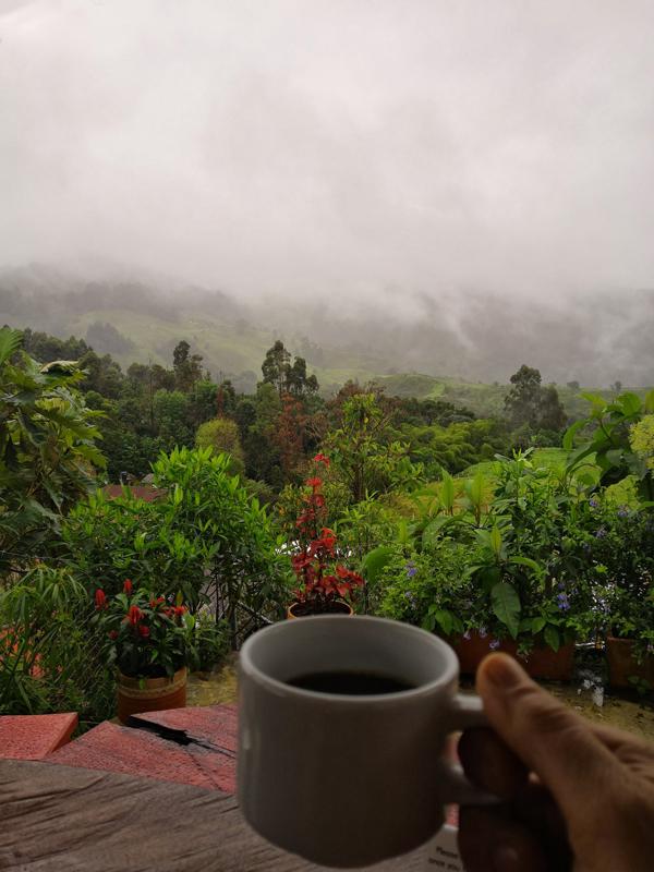 caffè colombiano. L'eje cafetero deve esserci per forza nel tuo itinerario di 3 settimane in Colombia.
