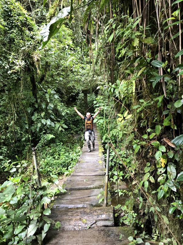 Trekking nella valle del Cocora in Colombia, esperienza imperdibile durante il tuo itinerario di 3 settimane in Colombia.